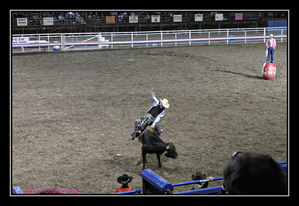 Cody Rodeo bull riding