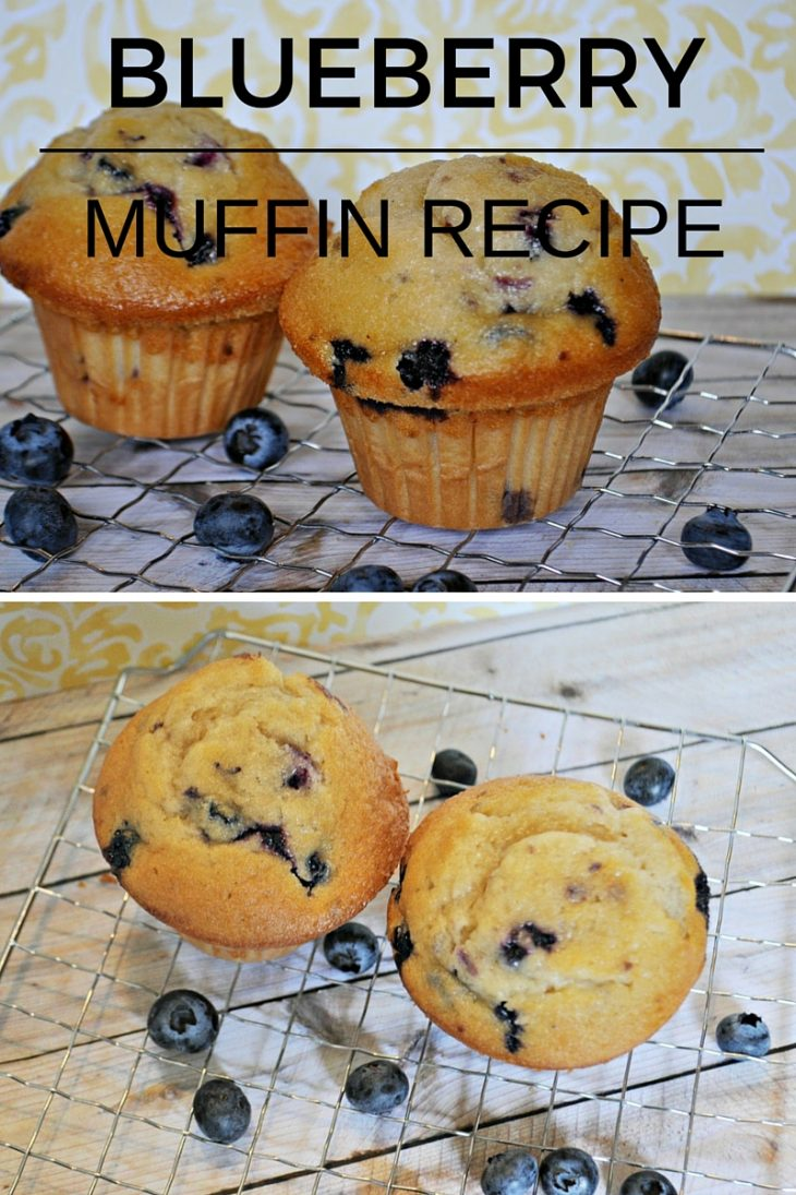 BLUEBERRY MUFFIN (2)