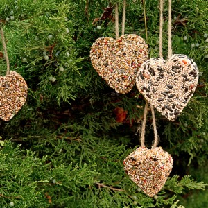 Birdseed Heart Cake Craft
