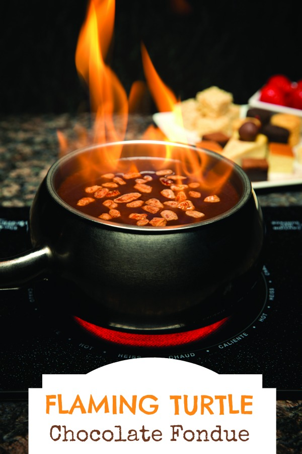 FLAMING TURTLE CHOCOLATE FONDUE