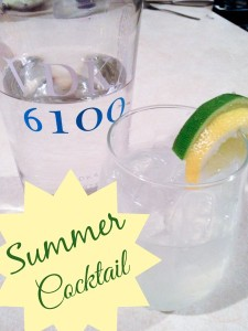 VDKA6100 Summer Cocktail