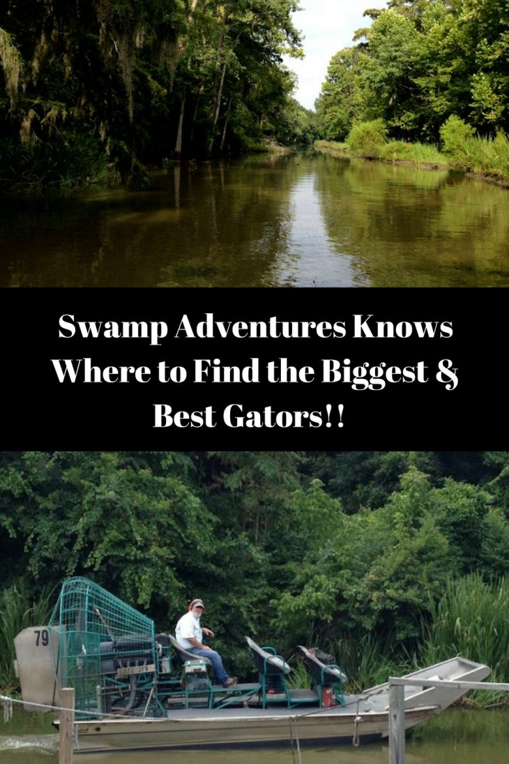 Swamp tours louisiana
