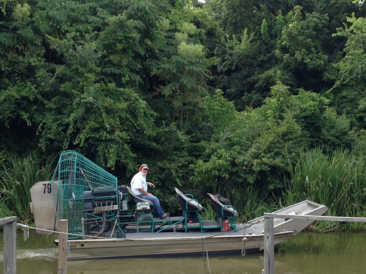 The Best Airboat & Alligators Swamp Tour in Louisiana