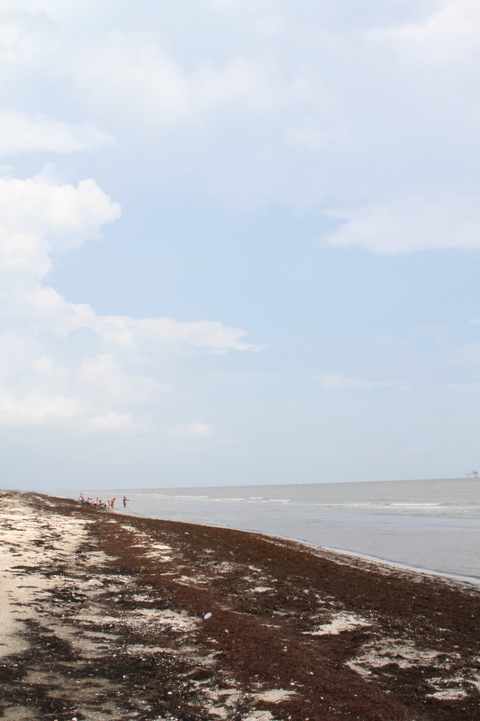 Creole Trail Beaches in Lake Charles, LA