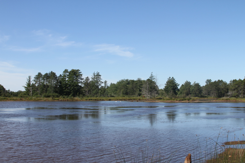 Seney National Wildlife Refuge