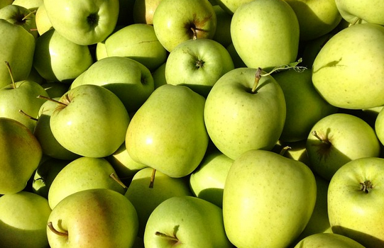 Michigan Apples From Farm to Table