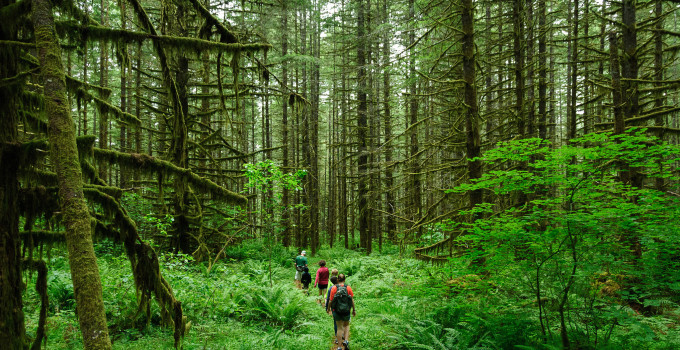 Top 7 Places to Hike in the U.S.