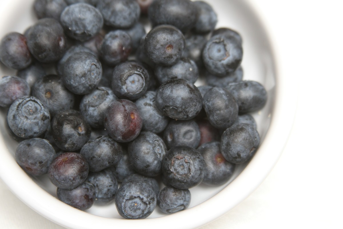 blueberry recipe