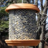 Easy to make bird feeder for your feathered friends