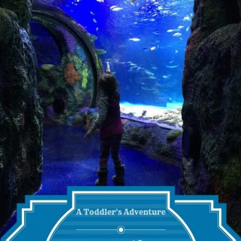 taking a toddler to sea life aquarium