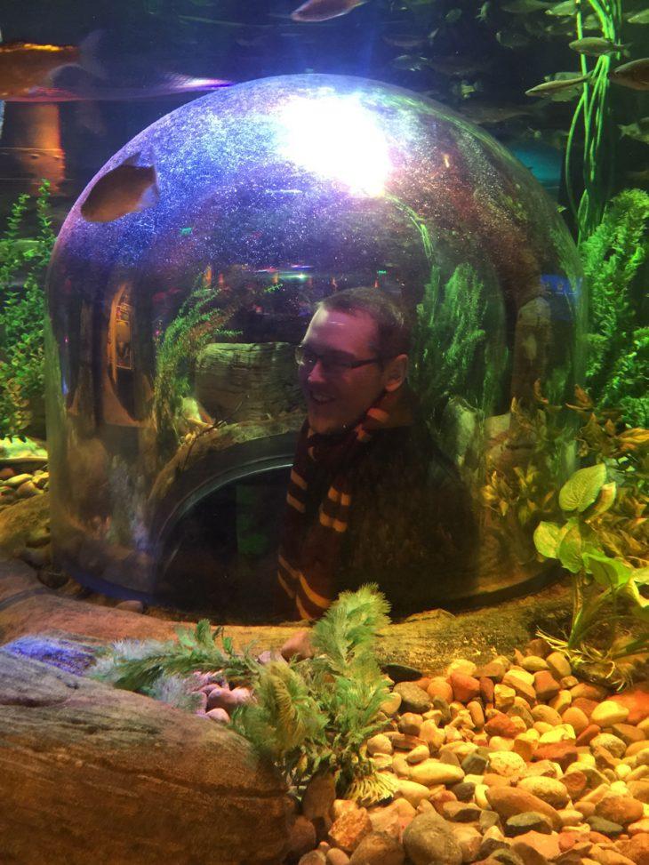 A Sea Life Aquarium adventure