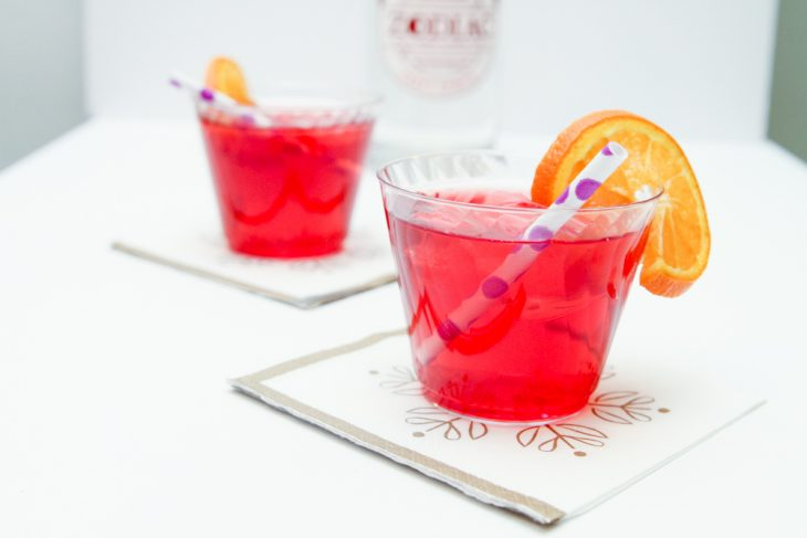 Berry Vodka Cocktail