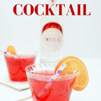 Berry Vodka Cocktail Recipe