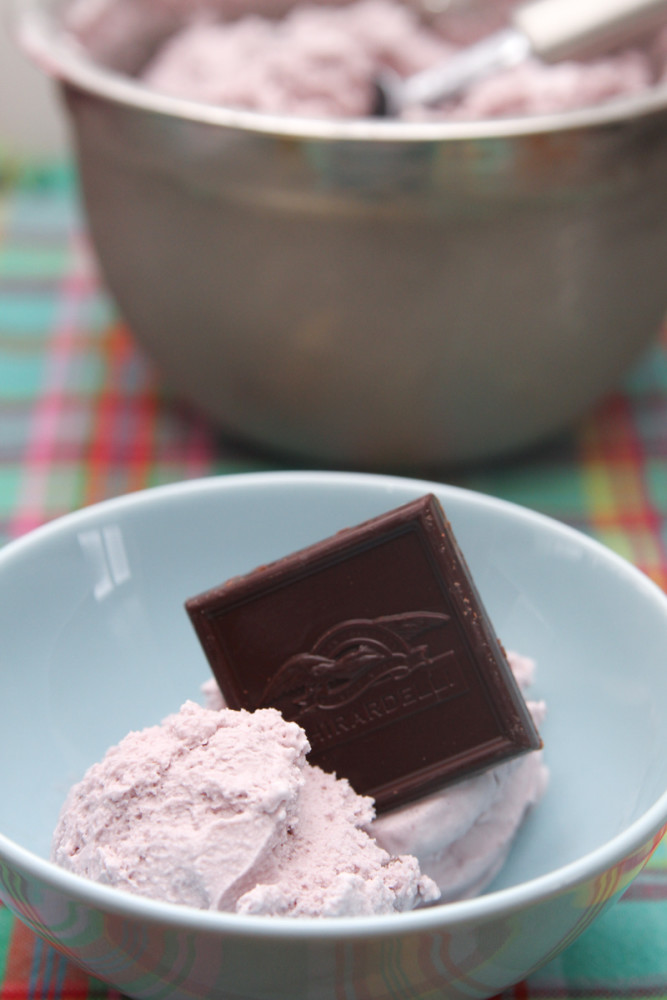 Red Wine & Chocolate Ice Cream-1