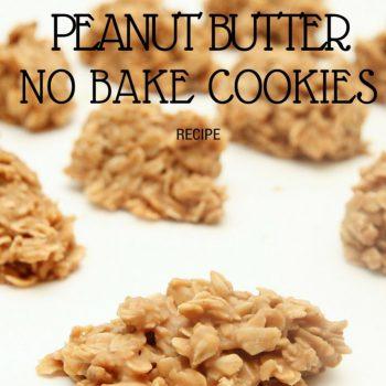 Vegan No Bake Peanut Butter Cookies Recipe