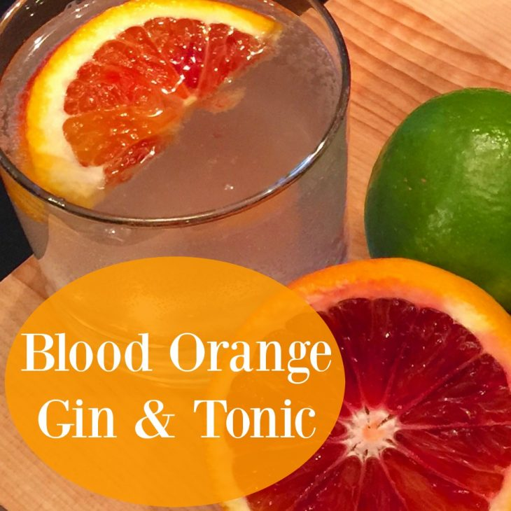 Blood Orange Gin and Tonic Recipe - Just Short of Crazy