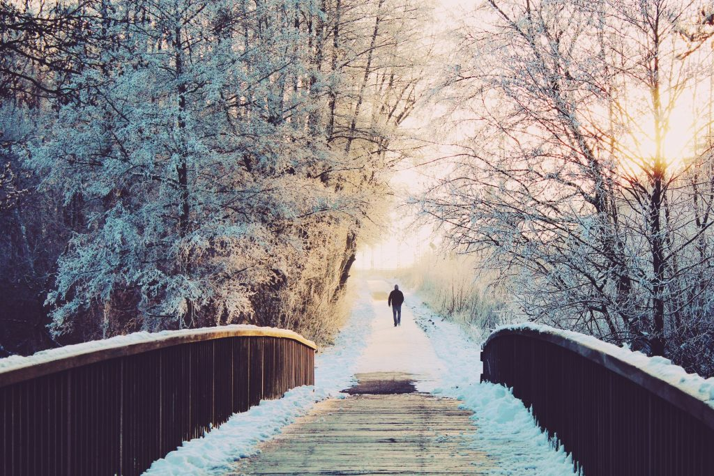 things to do in michigan during winter