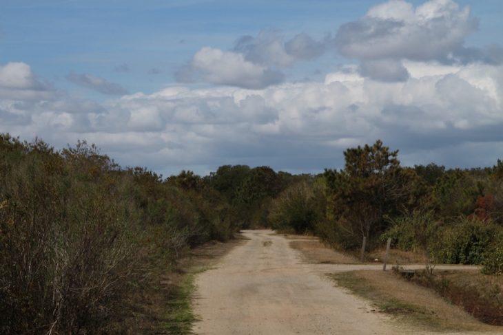 Corolla Outback Adventures