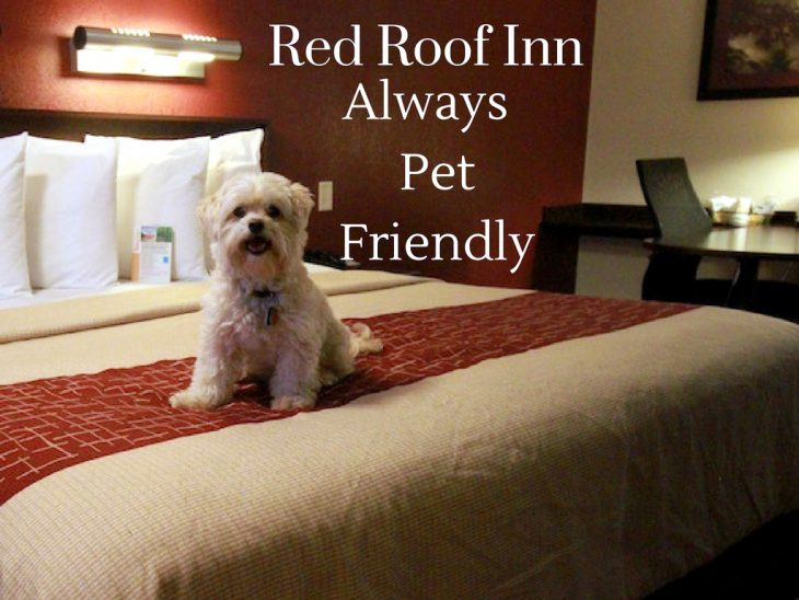 Red Roof opened its doors in February, , in Columbus, OH. The room rate then was $ Not a bad deal. And, while they charge a bit more these days, your pocketbook will still be pleasantly surprised.