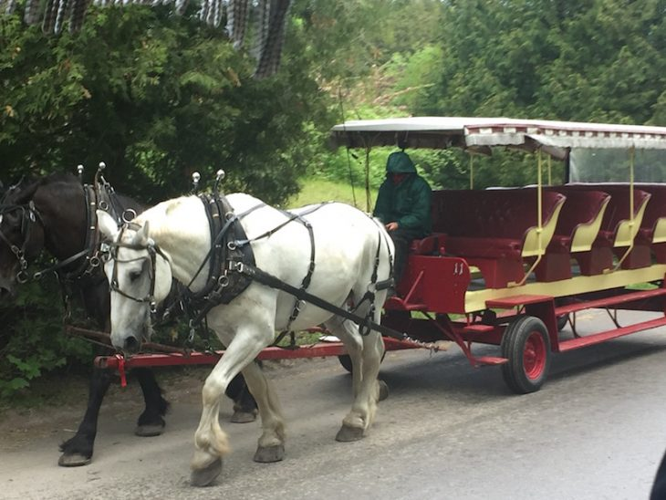 horse drawn taxi carriage on Mackinac Island