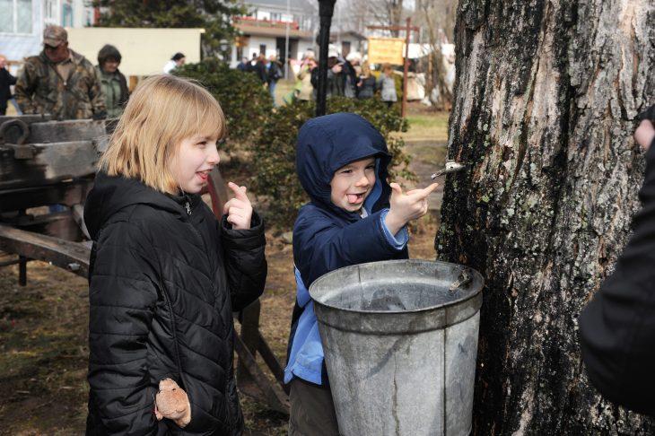 Maple fun in Pennsylvania
