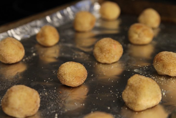 Snickerdoodle Cookies with a twist 9