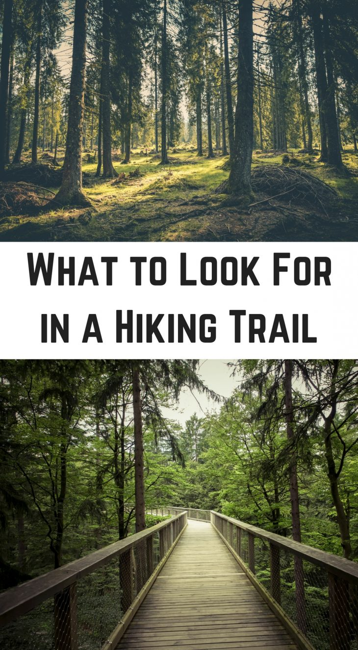 What to Look For in a Hiking Trail