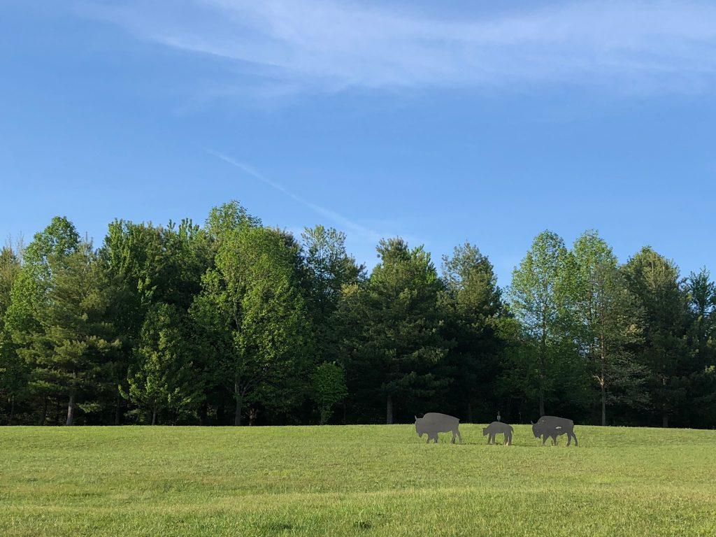 Buffalo Trace Park