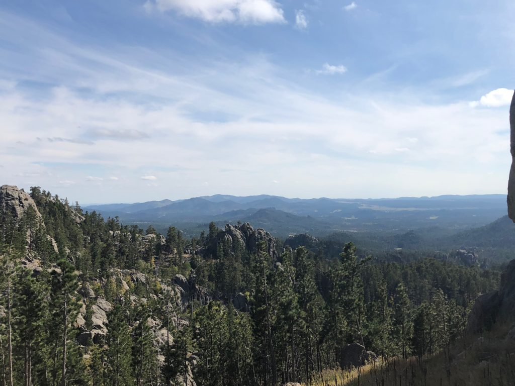 gorgeous overlook from the needles highway