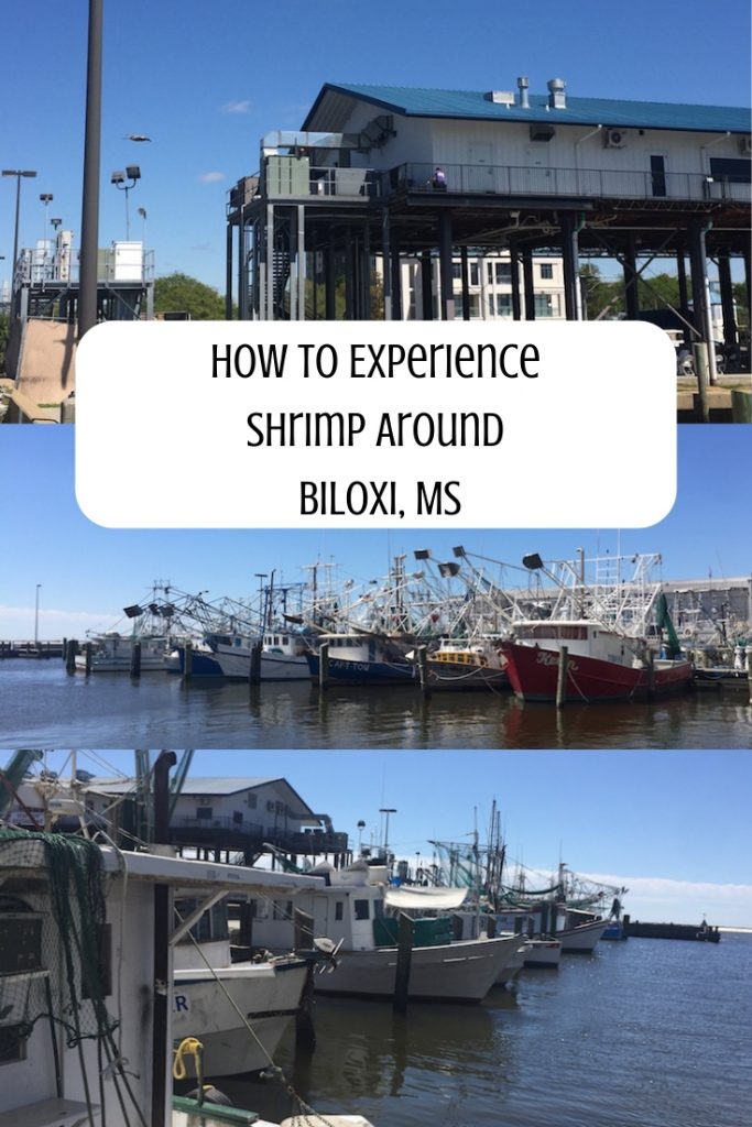 How To Experience Shrimp Around Biloxi MS