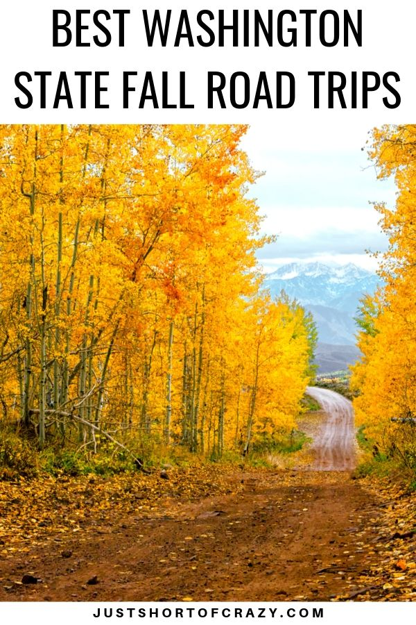 Best Washington State Fall Road Trips