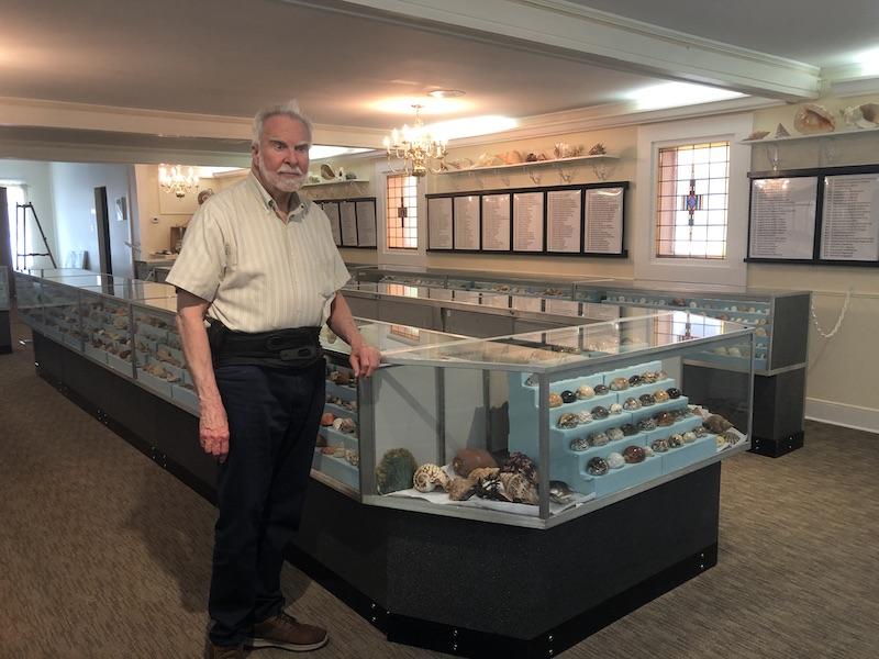 The Stimpson Seashell Museum