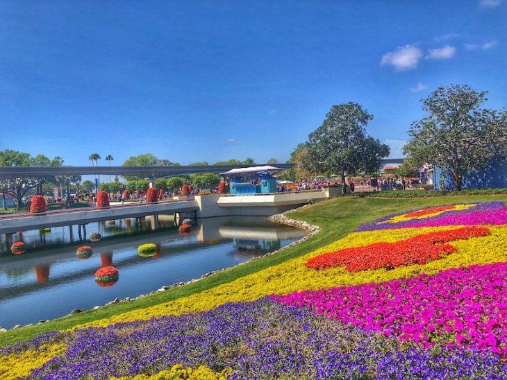 Epcot Flower and Garden Festival Blooms
