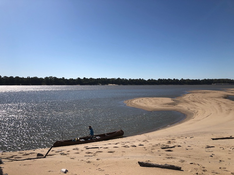 Exploring a sandy beach area along the mississippi river
