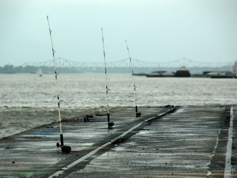 Fishing poles along the mississippi river