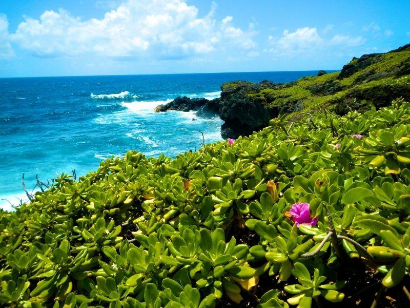 Hawaii's Hana Coastline