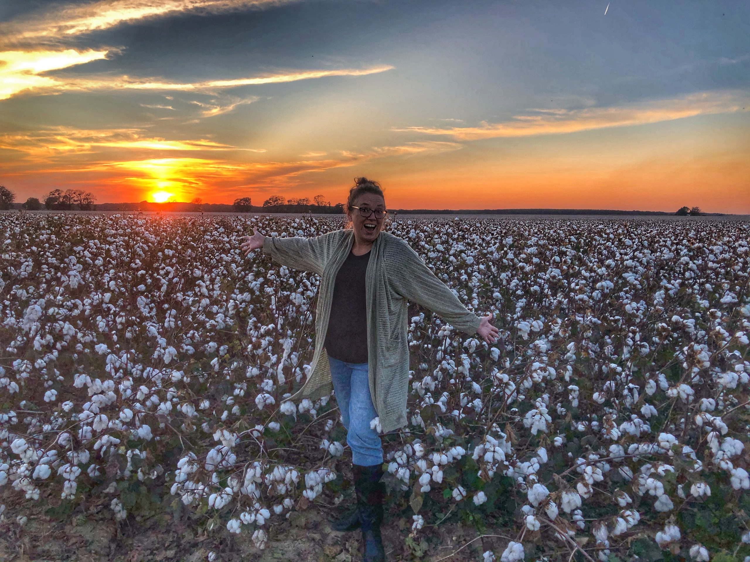 Cotton Fields Sunset in Mississippi