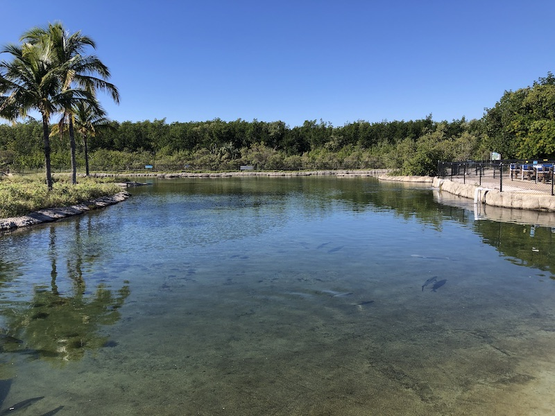 Lagoon at Florida Oceanographic Society in Florida