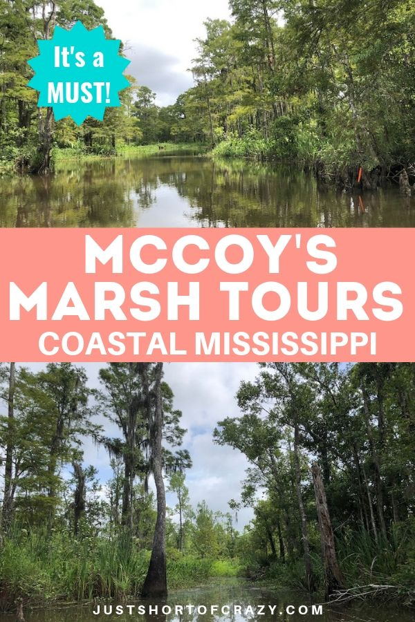 McCoys Marsh Tours