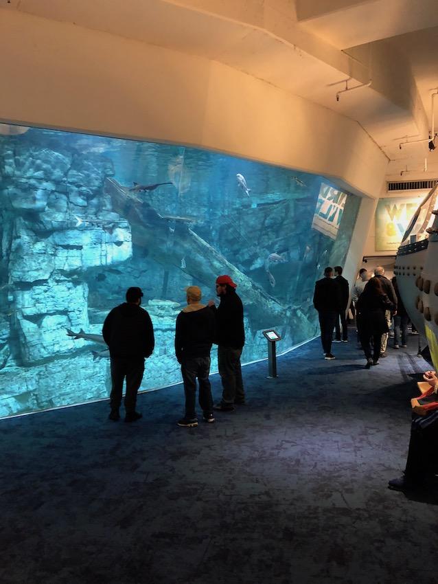 MIlwaukee aquarium
