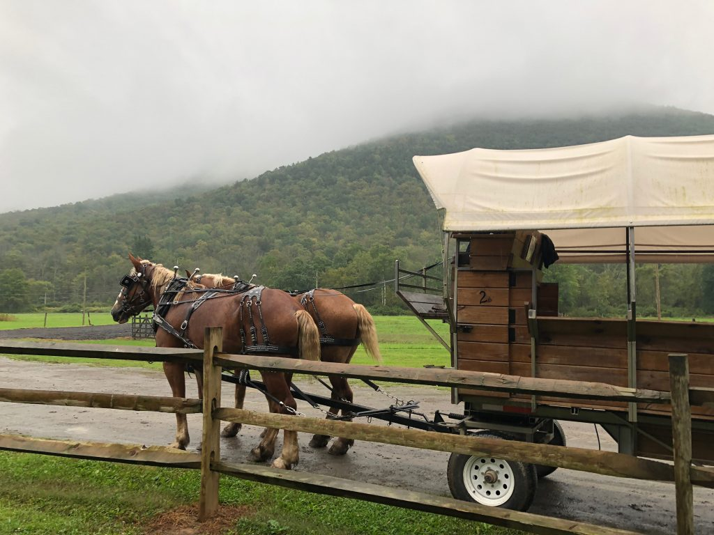 Ole Covered Wagon Tour 2