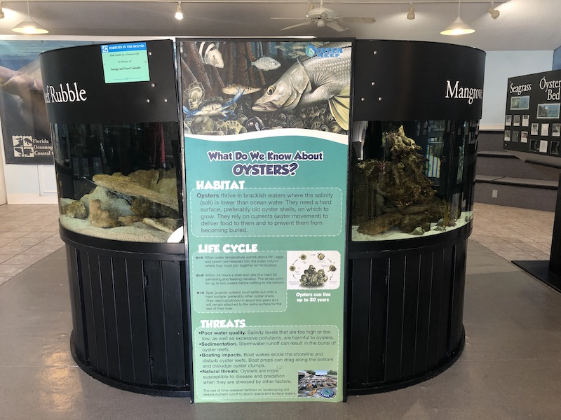 Oyster Display at the Education Center