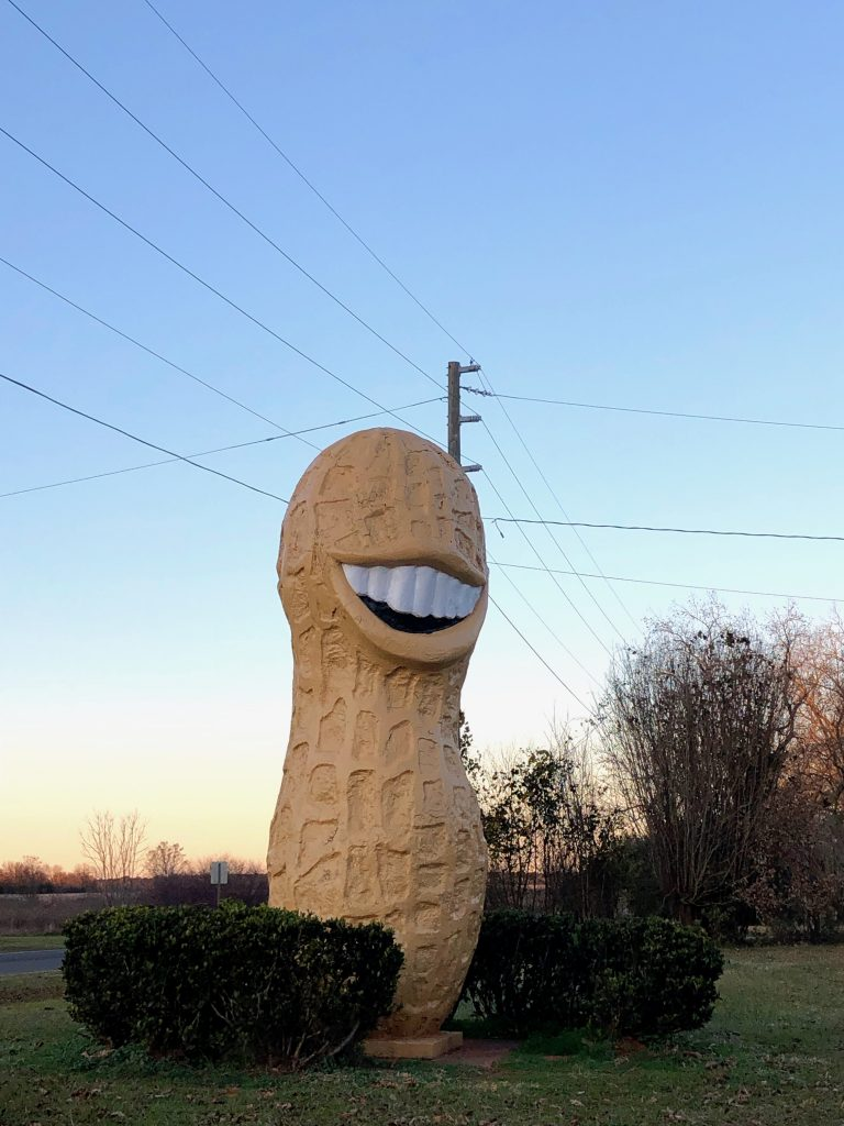 Peanut Statue in Plains GA