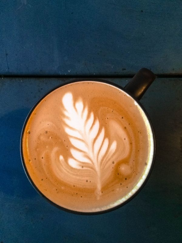 latte with leaf design in the foam