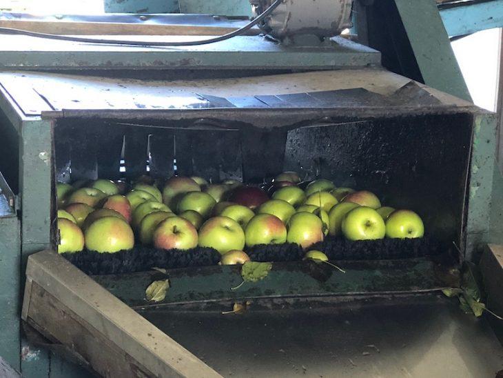 antique apple cider press at pumpkinville in western ny