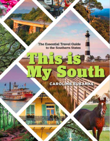 This is my south book cover
