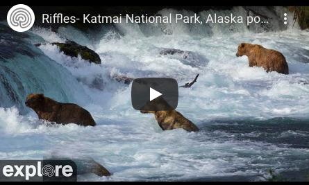 Watching Wildlife (U.S. National Park Service)
