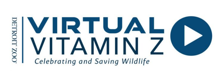Virtual Vitamin Z