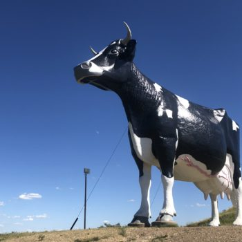 Worlds Largest Cow New Salem ND