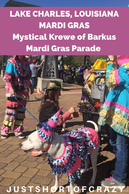Mystical Krewe of Barkus Mardi Gras Parade